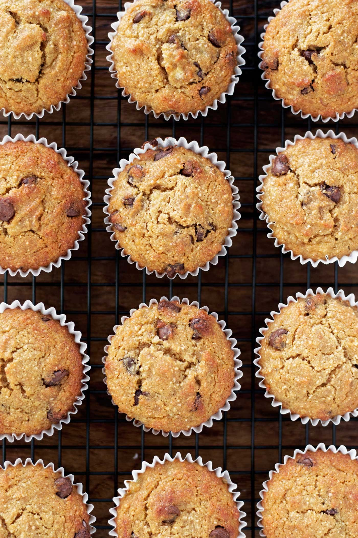 Paleo Banana Chocolate Chip Muffins Kits Coastal Choco Chips